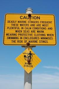 Beware - Stinger season