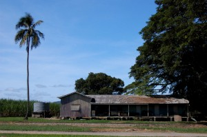 Farm shed - Cabin - FNQ rural architecture