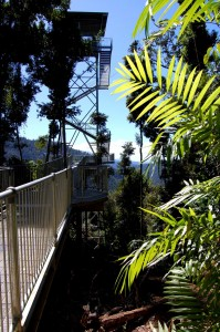 Ma:Mu Rainforest Canopy Walkway