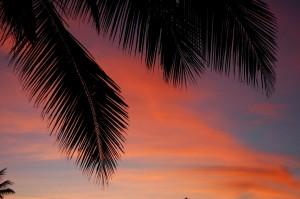 Far North Queensland Sunset 00