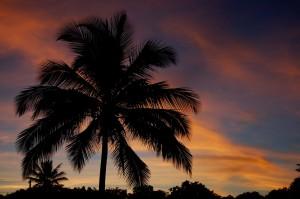 Far North Queensland Sunset 01