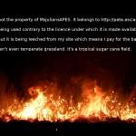 Cane field fire