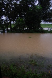 Flood_04