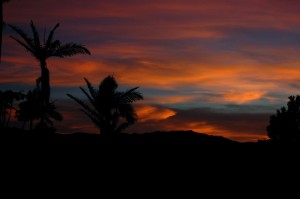 Another FNQ sunset