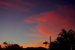 Silkwood Sunset